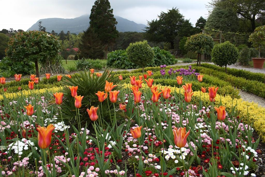 Tips voor het ontwerp van uw tuin